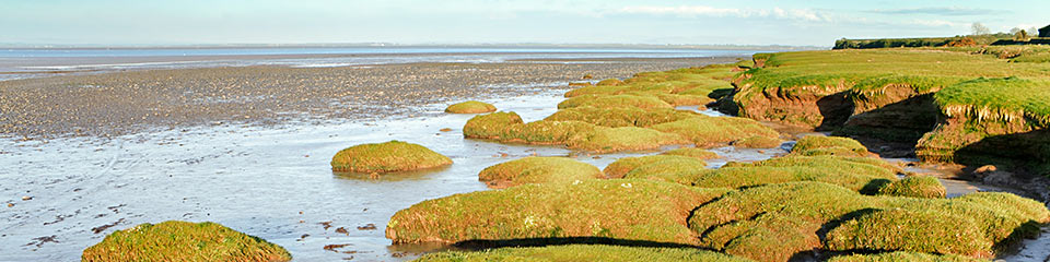Solway Nature Reserves